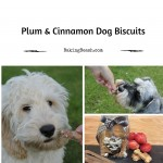 Plum and Cinnamon Dog Biscuits