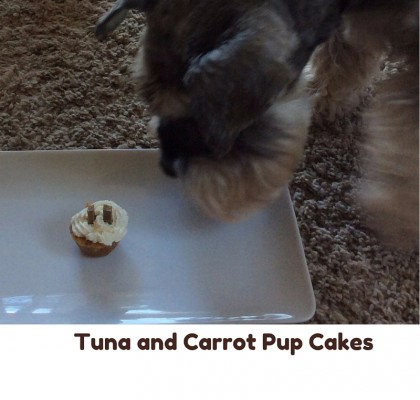 Tuna and Carrot Pup Cakes 3